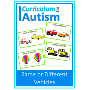 Same or Different Flash Cards- Vehicle Theme