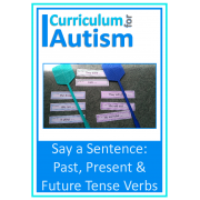 Present, Past & Future Tense Verbs, Say a Sentence