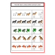 Animals Match, Count, Sequence, BUNDLE 50 Write & Wipe Pages
