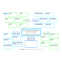 Back To School Graphic Organizer- Student Summary, for parents, teachers, therapists