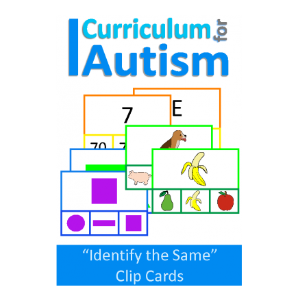 Basic Concepts Match The Picture clip cards