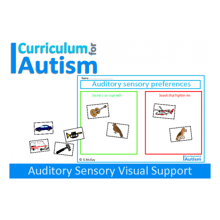 Auditory Preferences Sensory Visual Support