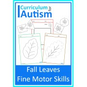 Fall Autumn Leaves Fine Motor Skills