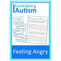 Feeling Angry What Should They Do? Cards & Worksheets