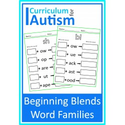 Beginning Blends Word Families Worksheets