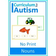 Nouns Picture Word Match NO PRINT Paperless Activity