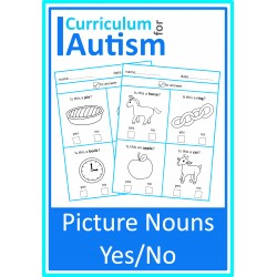 Vocabulary Picture Yes No Worksheets