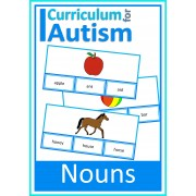 Reading Nouns Clip Cards