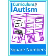 Square Numbers Clip Cards and Worksheets