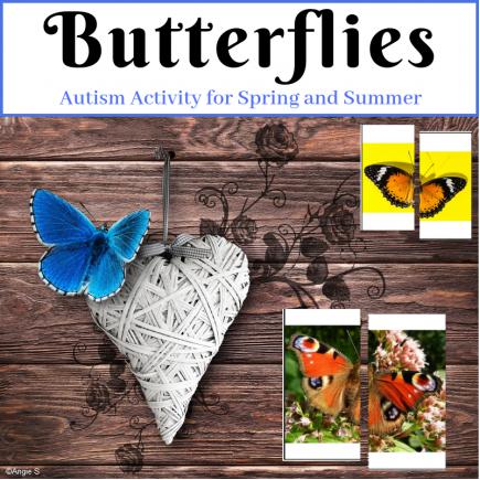 Butterflies Matching Halves