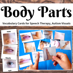 Body Parts Communication Cards for Autism