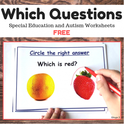FREE Which Questions Print and Go