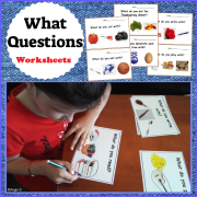 What Questions Autism Worksheets for Special Ed and Speech Therapy