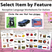 Receptive Language Print and Go  Worksheets- Select Item by Feature