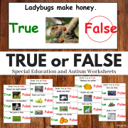 True or False Print and Go Worksheets
