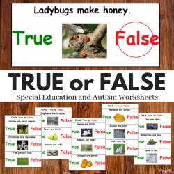 True or False Print and Go Worksheets