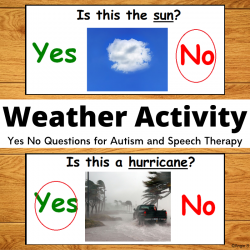 Print and Go Weather Yes No Questions
