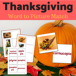 Thanksgiving Activity - Word to Picture Match