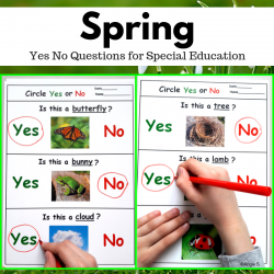 Spring Activity for Speech Therapy - Yes No Questions, Print and Go Worksheets