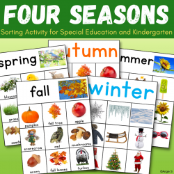 Four Seasons Sorting - Spring, Summer, Autumn, Winter