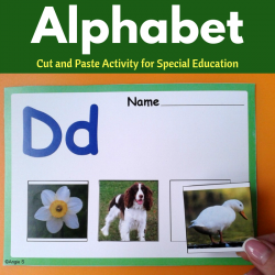 Alphabet Cut and Paste Activity