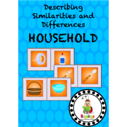 Similarities and Differences - Household Items